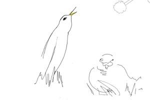 Bird Sheet Music @ Tate Liverpool on Sunday