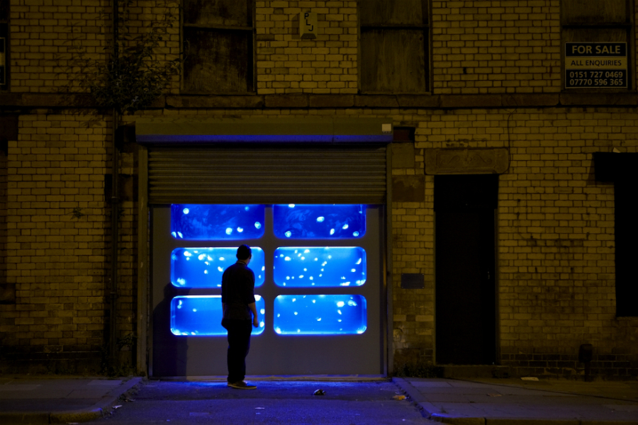 The Physical Possibility of Inspiring Imagination in the Mind of Somebody Living, Walter Hugo & Zoniel, 2014, Toxteth, Liverpool