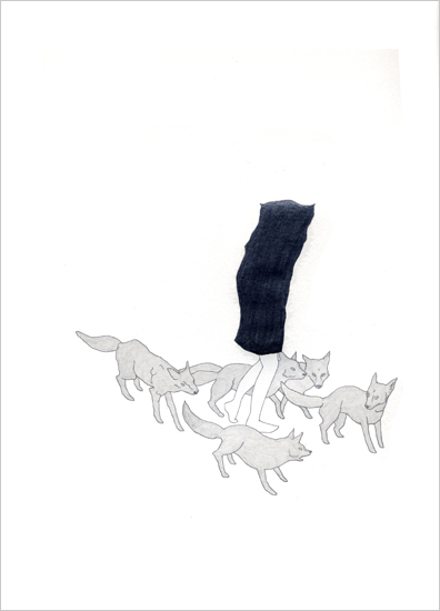 Rachel Goodyear, Foxes (2006). From the series Unable To Stop Because They Were Too Close To The Line