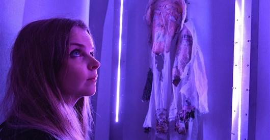 Labyrinth Psychotica -- an artist research project by Jennifer Kanary Nikolov(a)