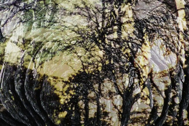 Holloway 2015 (still): Adam Scovell, Robert Macfarlane