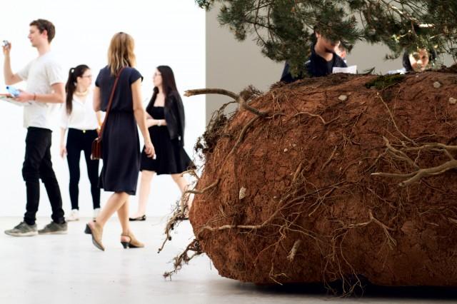 Celeste Boursier-Mougenot, revolutions, 2015.  Image courtesy Robert Battersby, La Biennale di Venezia 2015