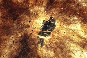 Infinite Horizon (Stephen Simmonds, UK) - Aesthetica Short Film Festival (ASFF)