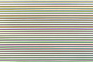 Rise 1 (detail), 1968 © Bridget Riley -- Courtesy Karsten Schubert London
