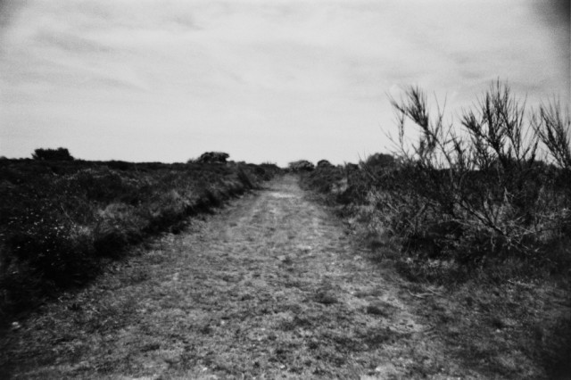 35mm photography by Adam Scovell, from his past, present and future (ongoing) English Eerie projects