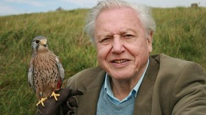David Attenborough at Sheffield Doc/Fest
