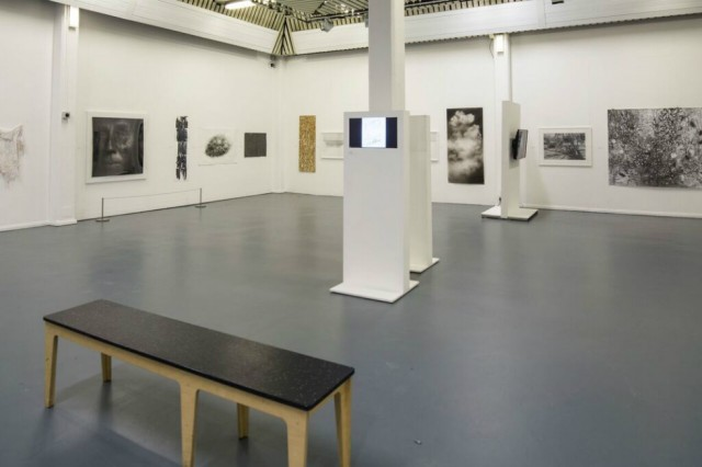 Jerwood Drawing Prize 2016 at The Turnpike: Jan--March 2017