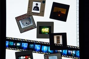 Site-Gallery-Helena-Dolby-7277-1600x1067