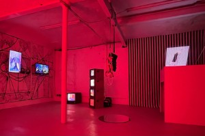PROFORMA X Begehungen Exhibition View. Image Chris Bailkoski-web
